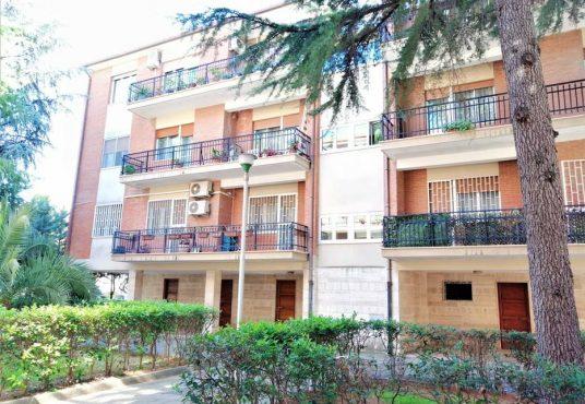 cimino agenzia immobiliare foggia-5-Vani-in-Vendita-Via-Fraticelli-7D
