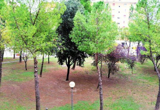 cimino agenzia immobiliare foggia-2-Vani-in-Vendita-Via-Fiorello-La-Guardia-6-4
